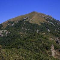 Бештау. Главная вершина (1401 м). :: Леонид Сергиенко