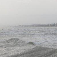 Море и город :: Людмила