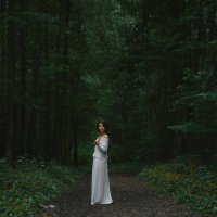Битцевский лес :: Artem Mihko