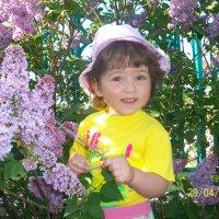 Весна :: Светлана Казмина