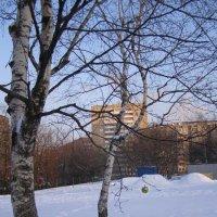 Золотое яблочко :: Анна Воробьева