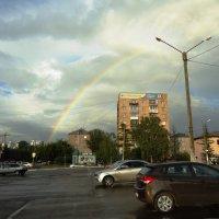 После дождя :: Лариса Рогова