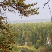 Река Серга :: Александр Гладких