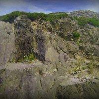Ирландские скалы :: Марина Домосилецкая
