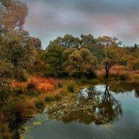 Осенний  румянец :: Лара Симонова