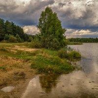Летний дождь :: Андрей Дворников