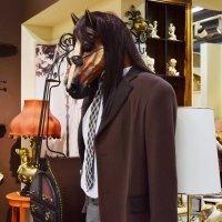 Кто сказал, что завтра осень?Кто, кто? Конь в пальто! :: Татьяна Помогалова