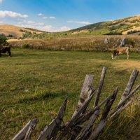 северная Черногория,высокогорье,Нац парк Дурмитор, с.Милагора :: Олег Семенов