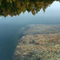 Камушек в воде :: ВЛАДИМИР