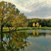 Закат над летним прудом... :: Sergey Gordoff