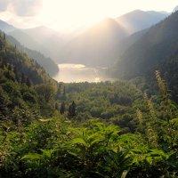 Абхазия. Озеро Рица. :: Сергей Черник