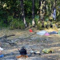Поддерживающая огонь в очаге :: Aleks Ben Israel