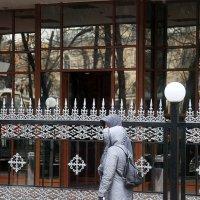 даже плащи в цвет ограды :: Олег Лукьянов