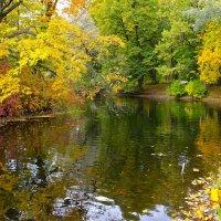 Осень. :: Милана Гресь