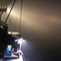 Ночной туман :: Василий Слободенюк