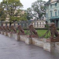 Львиная ограда :: El Кондукова
