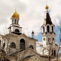Гомель. Свято-Никольский мужской монастырь :: Александр Прокудин
