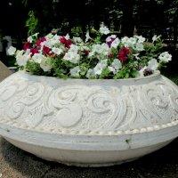 Цветочный вазон :: Нина Бутко