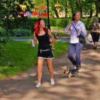 Дамы с собачками... :: Sergey Gordoff