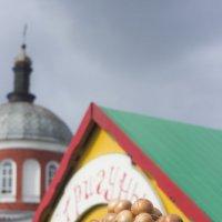 Стригуновское лукоморье в Хотмыжске :: Михаил Почкалов-Семченков