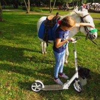 Зверушки - самая большая радость для детей :: Андрей Лукьянов