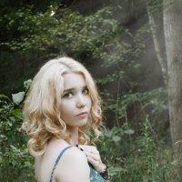 В лесу :: Елена Т.