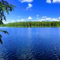 Глубоченский пруд :: Алиса Тимченко