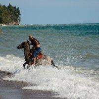 Купание коня :: Мария Ларионова