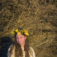 Золотая осень :: anton nenakhov