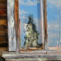 Сгрустнулось, ведь за окном птички чирикают! :: Vladimir Perminoff