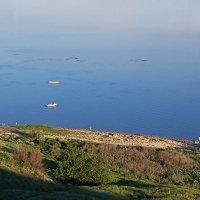 Таганрогский залив :: Ева Такус