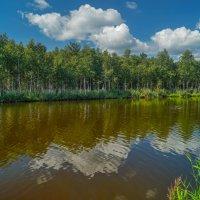 Река Исеть :: Александр Смирнов