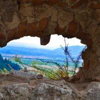 Вид из крепости Рышнов :: Nina Streapan