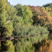 Осень.Сентябрь 2014. Озеро Линёво в черте города Балаково.Мостки :: Андрей Страхов