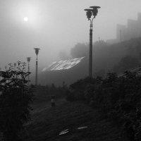 Туман 3 :: Людмила Цвиккер