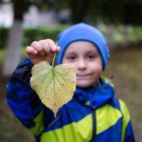 Осень :: Алексей Ушаков