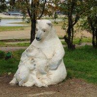 Медведица :: Roman PETROV