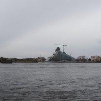Новая библиотека :: Анна Воробьева