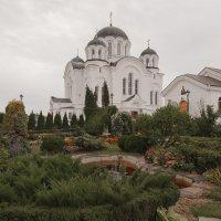 Спасо-Евфросиниевский женский монастырь. Полоцк :: Александр Манько