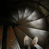 Куда идти дальше? :: Galina Belugina