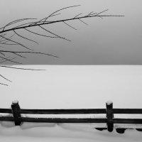 Бледный ветер :: Григорий