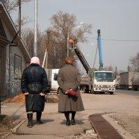 Дорожный патруль :: Alexander Petrukhin