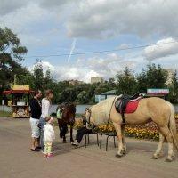 В Наташинском парке города Люберцы. :: Ольга Кривых