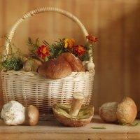 С белыми грибами :: SaGa