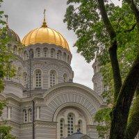 Кафедральный собор Рождества Христова :: Александр Творогов