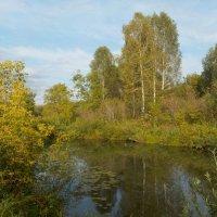 Пейзаж :: Ольга