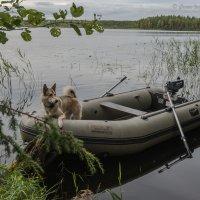 Рыбачка Ладка :: Борис Устюжанин