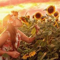В лучах жаркого солнца :: Наталья Владимировна Сидорова