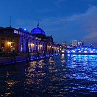 Blaue Nacht Hamburg. Fischmarkt :: Nina Yudicheva