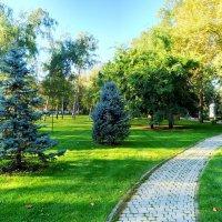 В Краснодарском парке :: Валерий Ткаченко
